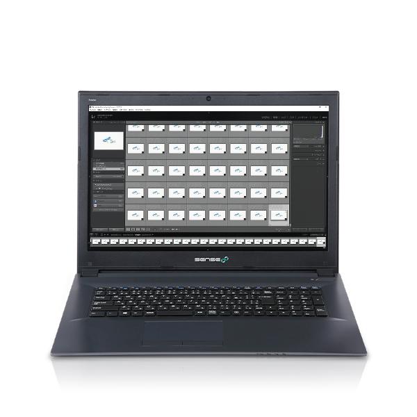 iiyama SENSE-17FH053-i7-HNFV-DevelopRAW